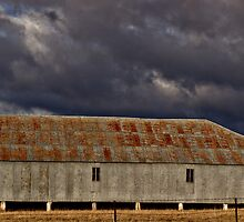 Shearing shed at Tharwa by Caroline Duncan