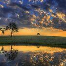 The Best of Bundaberg by Luke Griffin