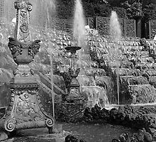 BW France palace of versailles Salle de Bal 1970s by blackwhitephoto
