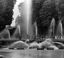 BW France palace of Versailles neptune fountains 1970s by blackwhitephoto