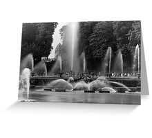BW France palace of Versailles neptune fountains 1970s Greeting Card