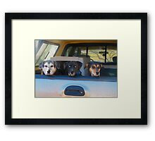 Three Amigos Framed Print