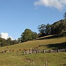 The Farm On Syndicate Road by aussiebushstick
