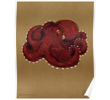 Coconut Octopus Poster