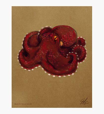 Coconut Octopus Photographic Print