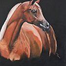 Red Arab Stallion. by Debra Freeman