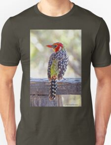 Red-and-Yellow Barbet Unisex T-Shirt