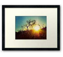 Here comes the sun..... Framed Print