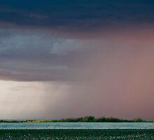 Rain Storm in the Desert Southwest by barnsis