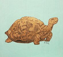 Golden turtle by Amy Shay