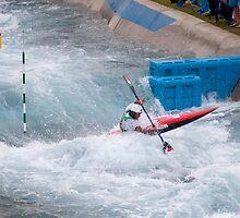 Daniele Molenti - gold medal - 2012 London Olympics - Lee Valley by John Corson Photography