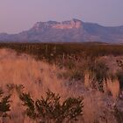 Guadalupe Mountains at Sundown by seymourpics