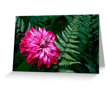 Flower and Fern Greeting Card