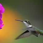 Hummer And Subtractive Colors by Gary Fairhead