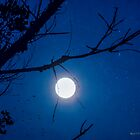 Once in a Blue Moon by Rhonda Strickland