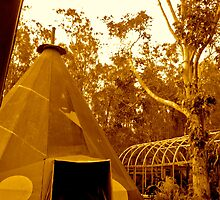 Tipi, The Arts Factory, Byron Bay by Sarah Bayaidah