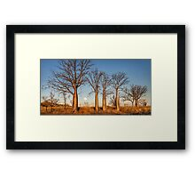 Kimberley Boabs at Sunset Framed Print