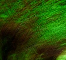 Green Abstract by CarolDianne