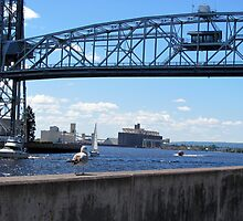 Duluth, MN: Let the Ships In by ACImaging