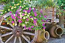 Wagon Wheel, Flowers and Pottery by John Butler