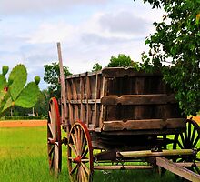 The Old Wagon by Kathy Baccari