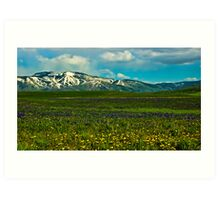 Wildflowers Touch the Mountains Art Print