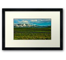 Wildflowers Touch the Mountains Framed Print