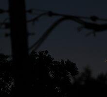 Moon Sliver by Adam Kuehl
