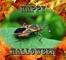 Halloween Greeting Card - Box Elder Bug by MotherNature