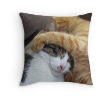 Puggy & Honey Throw Pillow