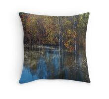 Nerang River Early Morning III Throw Pillow