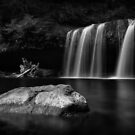 The Breach · Monochrome by Tula Top