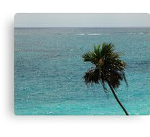 beautiful Mexican shore Canvas Print