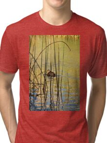 Winter Light on Duck Pond Tri-blend T-Shirt