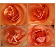 Apricots & Oranges Photographic Print
