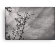 The Sweetest Days I Found... I Found With You Canvas Print