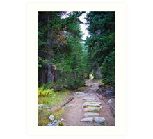 Rocky Mountain Forest Path Art Print