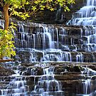 Albion Falls by jules572