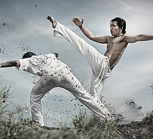 Capoeira fighter by ferli