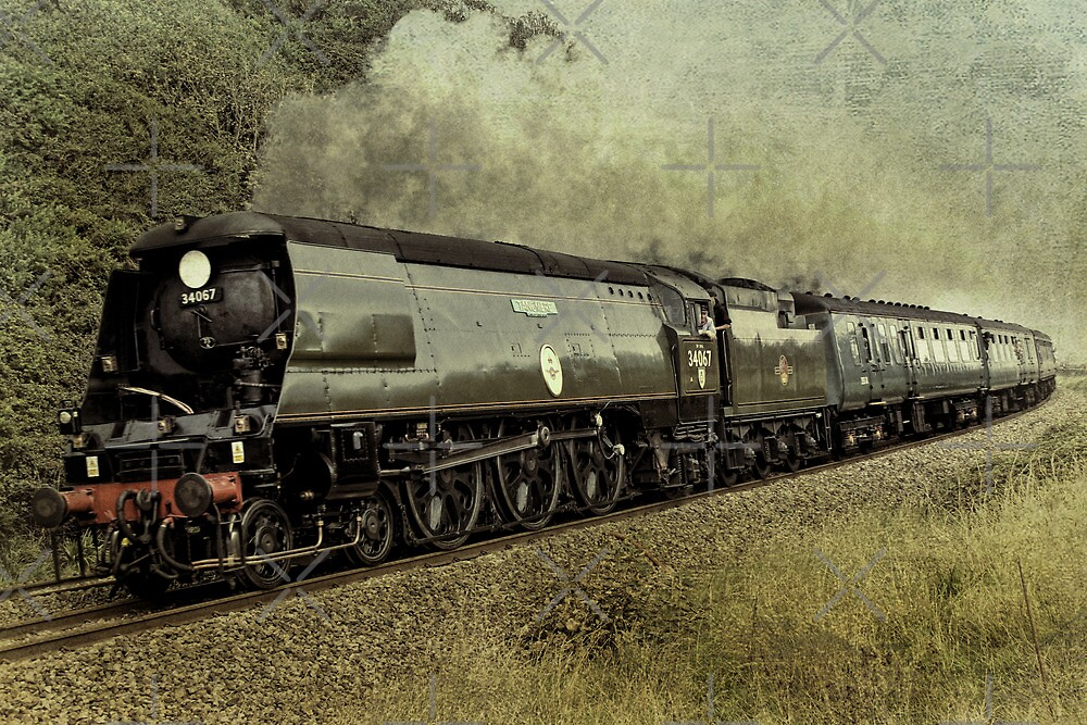 Tangmere by Country  Pursuits