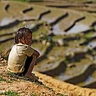black hmong girl in the paddies by Klaus Brandstaetter