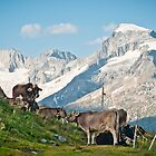 Grazing on top of the world by UniSoul