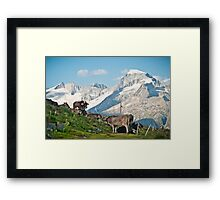 Grazing on top of the world Framed Print