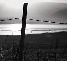 some fence by JorunnSjofn Gudlaugsdottir