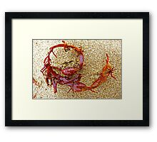 Fireweed Circle Framed Print