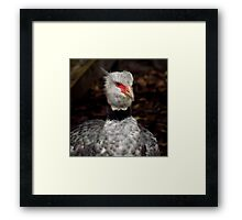 I Am Ready To Party ! Framed Print