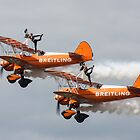 Wing Walkers by William Rottenburg