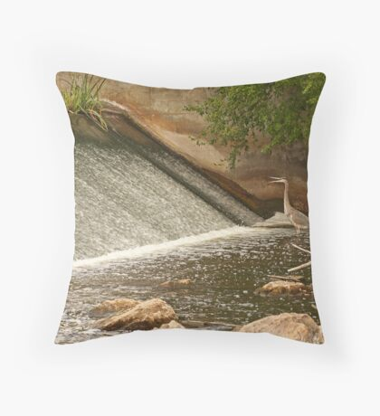 Great Blue Heron Waiting For Fish to Slide Down Throw Pillow