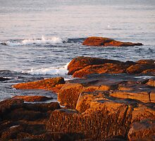 Early Morning Waves and Seaweed by Linda  Makiej Photography