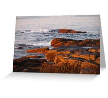 Early Morning Waves and Seaweed Greeting Card